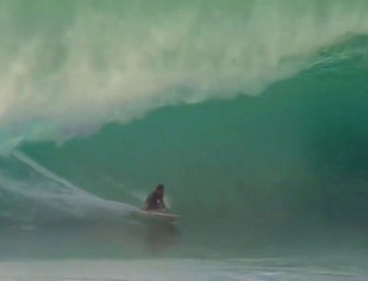 Leo Fioravanti, Hawaii, Video